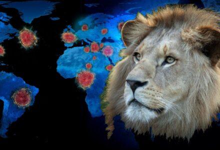 leoni estinzioni(2)